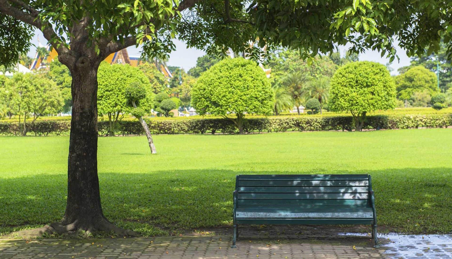 Meraflor cura del verde urbano-manutenzione del verde urbano